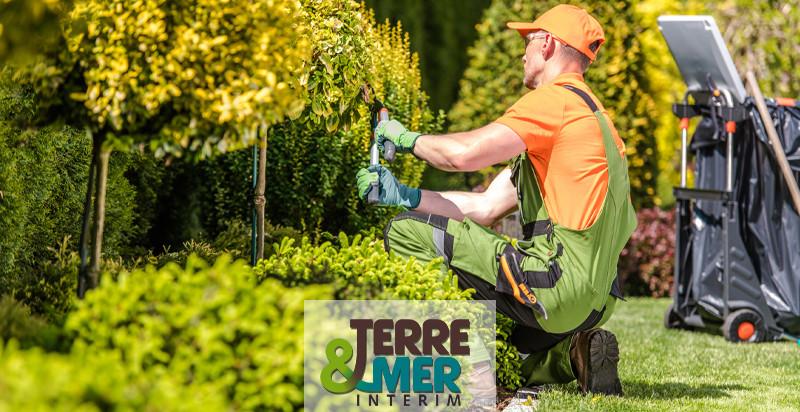 Jardinier paysagiste en entretien