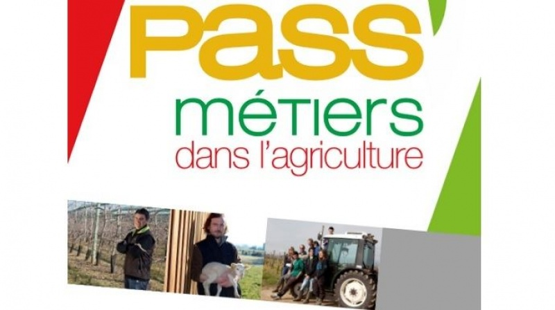 Le dispositif Pass'métiers