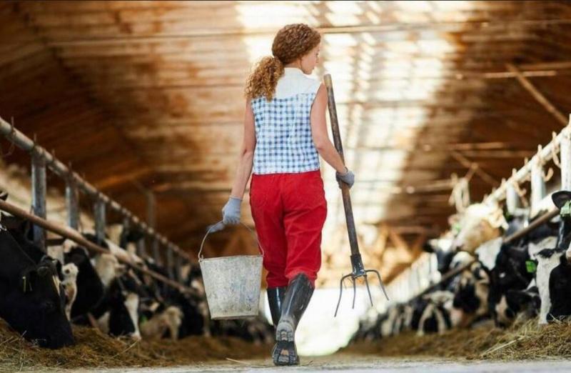 Le renouvellement des générations est au cœur de la nouvelle Politique agricole commune.